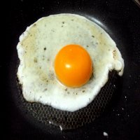 1409. Fried Egg on Top