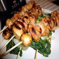 79. Chicken & Mushroom Kebab