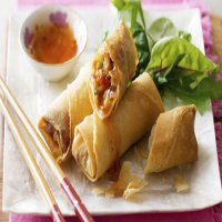 24. Vegetable Spring Roll